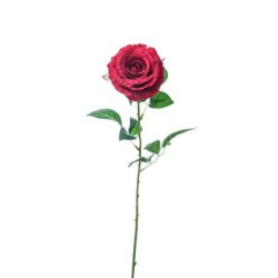 ROSA LAURA RED